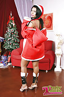 Busty Tranny In Xmas Outfit Undressing & Jerking