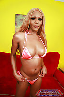 Sexy Caramel Kissed Heather Tranny Pack