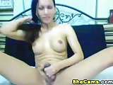 Webcam solo tranny is for all comers