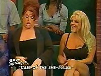 Hot Trannies on Jerry