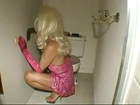 Horny TS hottie fucked in the toilet