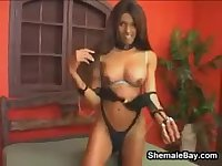 Shemale Gets Her Dick Sucked