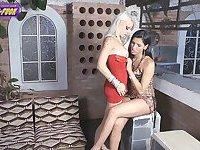 Giovanna Secret and Tamarah Camargo all poses fucking
