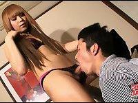 Hot scenes with a pretty ladyboy