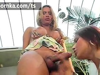 Chick sucks Tgirls dong with a great delight